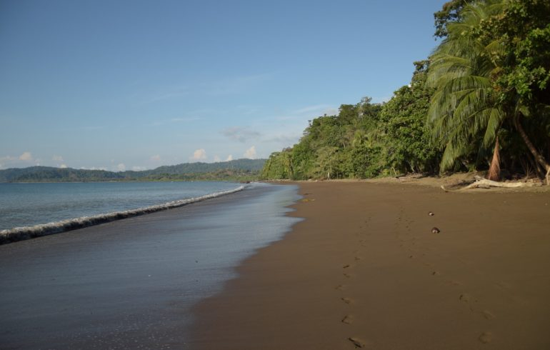 Strand Drake Bay