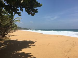 Playa Bluff, Bocas del Toro, Panama