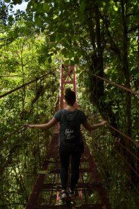 Hanging Bridge Monteverde Reservat