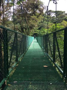 Hanging Bridges Selvatura Park
